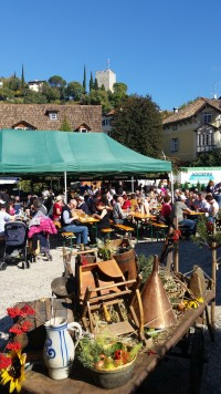 The grape festival in Merano